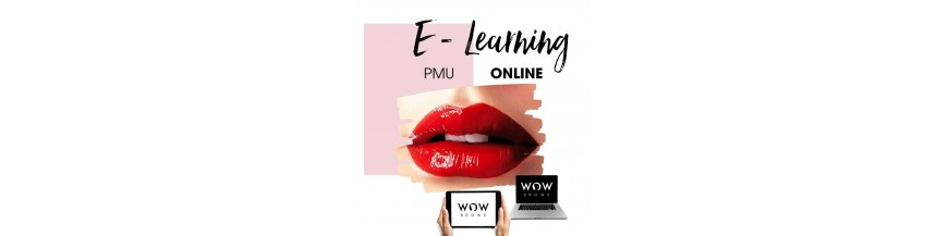 Onlinekurse für Permanent Make Up, Microblading online lernen